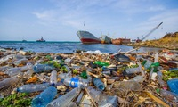 Regional dialogue on combating plastic pollution in the East Sea
