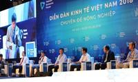 First overseas Vietnamese economic forum to be held