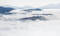 Cloud-hunting season in Da Lat