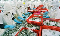Vietnam's shrimp exports to EU to gain growth