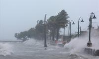 Tropical depression develops into typhoon Pabuk