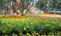 Spring Flower Festival dazzles Ho Chi Minh City