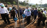Party, State leader launches Tết tree planting festival in Yên Bái