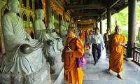 Vesak brings potential to promoting cultural beliefs tourism