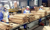 Timber, wood product exports reach US$9.64 billion in 11 months