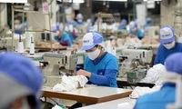 Businesses increase investment despite COVID-19 rebound