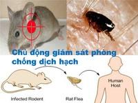 Tăng cường giám sát bệnh dịch hạch tại các cửa khẩu
