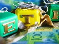Quỹ ETF nội ở sao kém quyến rũ?