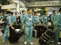 Đào tạo miễn phí cho lao động từng làm việc tại Hàn Quốc