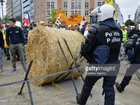 Nông dân châu Âu kêu cứu vì giá nông sản 'rẻ như cho'