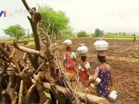 Thân phận những người vợ 'nước' tại Ấn Độ