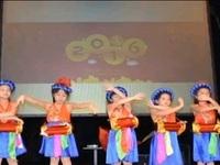 Hội Người Việt Nam tại Czech gặp mặt dịp năm mới