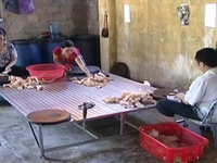 Thanh Hóa: Bắt quả tang 6 hộ dân chế biến mỡ bẩn từ bì lợn thối