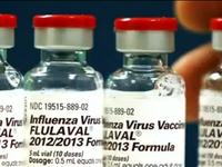 Nhật Bản: Giá vaccine cúm tăng gần gấp đôi