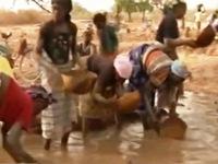 Trẻ em Mali bỏ học đi khai thác vàng