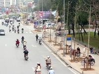 Vụ chặt cây xanh tại Hà Nội: Kỷ luật 11 cán bộ