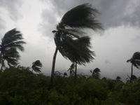 Tối 7/10, siêu bão Matthew đổ bộ Florida (Mỹ)