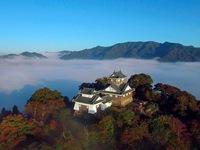 Tòa lâu đài hùng vĩ tại Nhật chỉ được ngắm 10 lần trong 1 năm