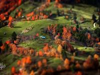 Những khuôn hình đắt giá của mùa thu Romania từ máy ảnh rẻ tiền