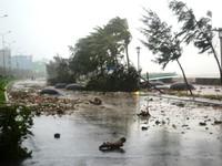 Áp thấp nhiệt đới hướng về đất liền các tỉnh Trung - Trung Bộ