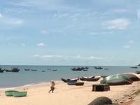 Quảng Bình: Khó thống kê tổng thiệt hại do sự cố môi trường