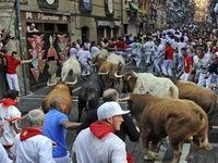 Thót tim với lễ hội đua bò tót ở Tây Ban Nha