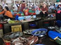 Bộ Y tế khuyến cáo 154 mẫu hải sản miền Trung không nên ăn