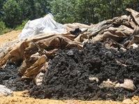 Formosa chưa thể xử lý gần 400 tấn bùn thải chôn lấp trái phép