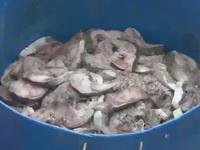 Hàng chục tấn cá chết hàng loạt ở Cẩm Phả, Quảng Ninh