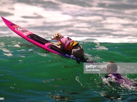 Cuộc thi lướt sóng dành riêng cho những... chú cún