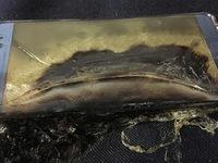 Cục Hàng không xem xét nguy cơ Galaxy Note 7 cháy nổ trên máy bay