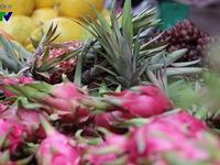 Lần đầu tiên xuất khẩu rau quả 'vượt mặt' gạo: Lạc quan nhưng nhiều nỗi lo