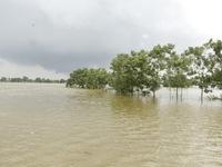 Nhiều nơi ở Hà Tĩnh vẫn chìm trong biển nước