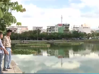 Ô nhiễm hồ điều tiết nội thị Đà Nẵng