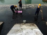 Báo động ô nhiễm môi trường các hồ ở Hà Nội