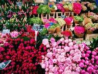 Ghé thăm khu chợ hoa sôi động tại London