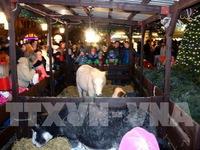 Việt Nam dự Hội chợ Giáng sinh quốc tế tại Cộng hòa Czech