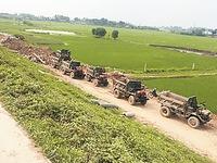 Bình Định hỗ trợ lúa giống giúp người dân khôi phục sản xuất