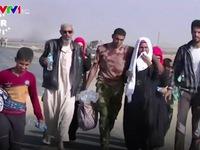 IS bắt người dân Iraq làm 'lá chắn sống'