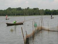 ĐBSCL: Cạn kiệt nguồn lợi thủy sản vì không có lũ