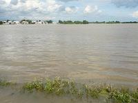 Mưa lũ gây thiệt hại cho người dân Bình Thuận