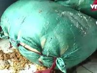 Đà Nẵng: Phát hiện kho hàng chứa gần 5 tấn mỡ bẩn