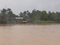 Mưa lũ gây thiệt hại lớn tại các tỉnh miền Trung