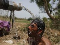 Gần 300 người tử vong do nắng nóng tại Ấn Độ
