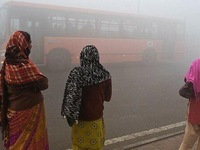 1/2 dân số Ấn Độ giảm 3 năm tuổi thọ do ô nhiễm không khí