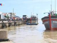 Tai nạn tàu cá - Bất cập từ khu neo đậu