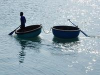 Hai ngư dân Quảng Ngãi thiệt mạng và mất tích khi câu mực