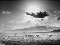 Rung động với những bức ảnh vùng nông thôn Kenya