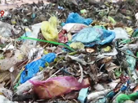 Cần Thơ: Đóng cửa hoàn toàn bãi rác Đông Thắng vào năm 2017