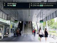 Vì sao người dân Singapore thích sử dụng cầu vượt?